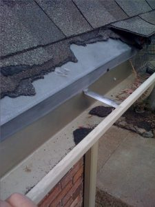 Pests can do heavy damage to your house.